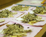 Traditional Chinese Medicine Maker Q1 Profits up 13.7%