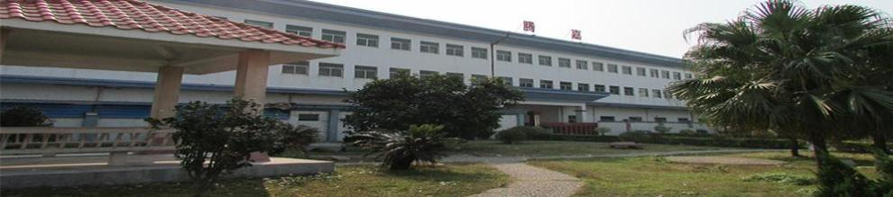Dongguan Tengjia Plastic & Hardware Co., Ltd.