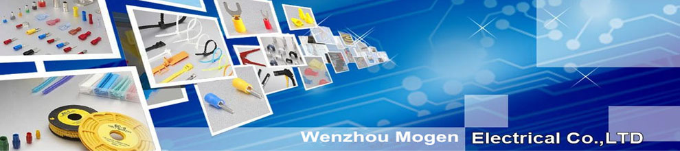 Wenzhou Mogen Electric Co., Ltd.