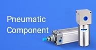 Pneumatic Component