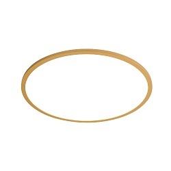 Hierro Creativa Moderna Lámpara de Techo LED de Interior de Acrílico para Dormitorios