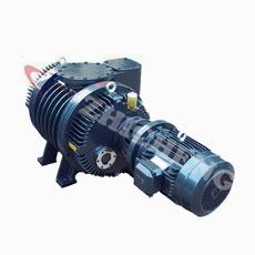 Корни Zhicheng Zjp-300 насоса вакуумного насоса