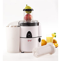 Powerful Commercial Juicer