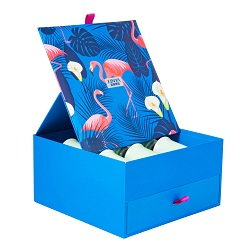 Santa Conjuntos de Estanho Penguin Ostentar Natal Caixas de Estanho