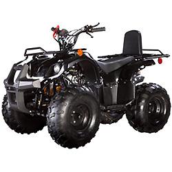 ATV Barato en Venta 110cc ATV Gasolina ATV Lianmei ATV