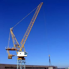 Благонадежное Luffing Tower Crane L85 6t/Jib: 40m