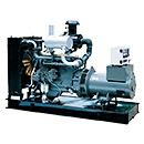 Professional Diesel Generator 1000 kVA