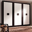 Special Lacquer Wardrobe with ISO and E1 Standard