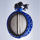 1.4529 Double Flanged Butterfly Valve