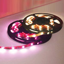 LED Rope Strip