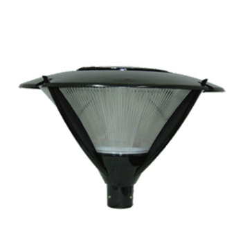 60W Induction Lighting Garden Lamp (JS-TY0702)