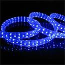 LED Strip(SX-5050B60R-W12)