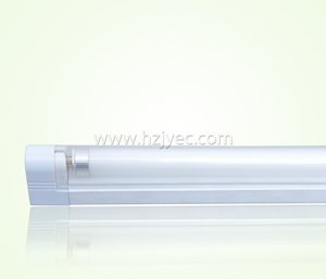 T5 Fluorescent Lamp Wall Lamp