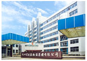 Hangzhou Advance Gearbox Group Co., Ltd.