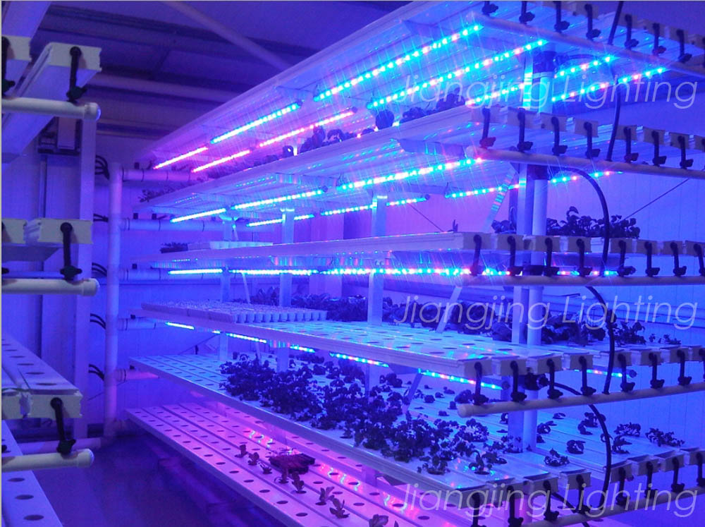 Industrial Led Grow Lights : Ip waterproof led grow light hot sell new products