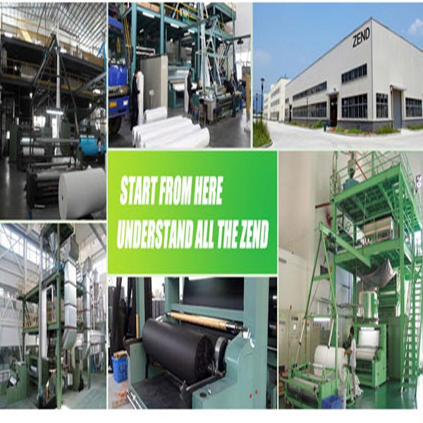 Shenzhen Lifeng Zend Technology Co., Ltd.