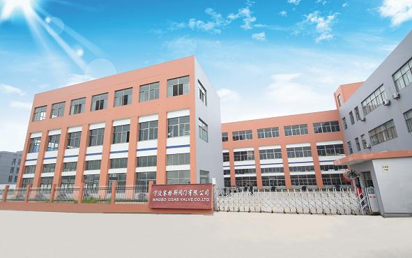 Ningbo Cgas Valve Co., Ltd.
