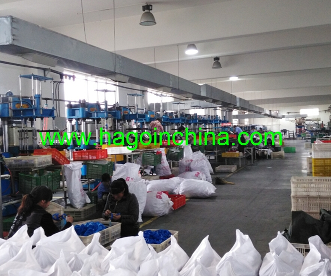 Hagoin Development Co., Limited