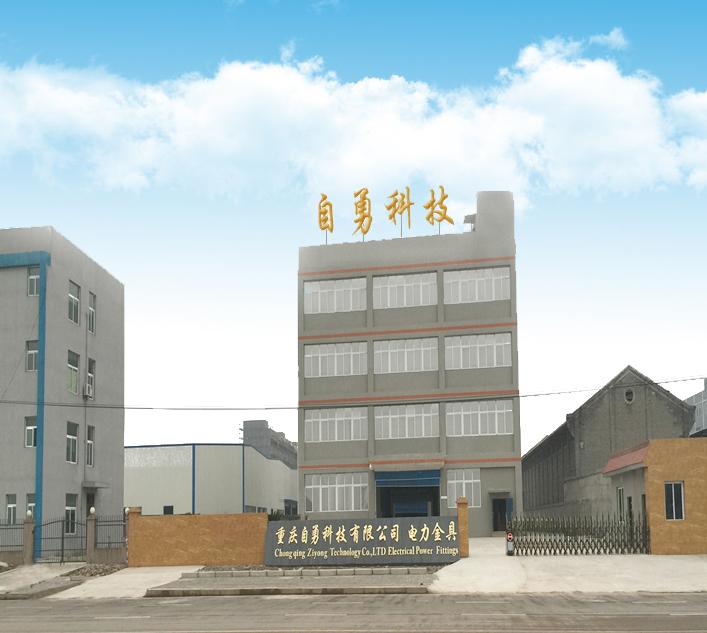 Chongqing Ziyong Technology Co., Ltd.