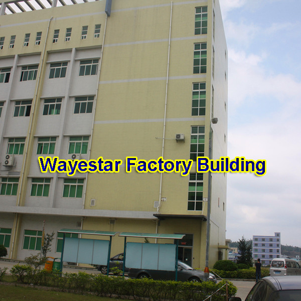 Shenzhen Wayestar Technology Co., Ltd.