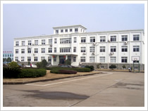 Cixi Goldring Hardware Fasteners Co., Ltd.