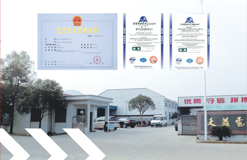 Shengzhou Tianyi Electric Appliance Co., Ltd.