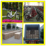 Foldable 250w Electric Bikes For 20′ Container