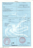 CERTIFICATE of ORIGIN of THE PEOPLE′S REPUBLIC of CHINA