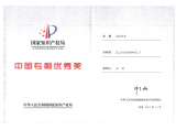 China Outstanding Patent Certificate