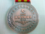 Broze Medalist of 28th Shanghai lnnovation anal lnvention Competition