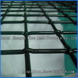 cirmped wire mesh