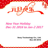 New Year holiday