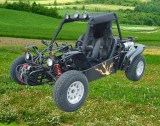 EEC & EPA approved Go Kart