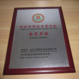 Member of Hubei E-business association