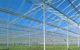 Glass Greenhouse with Top Ventilation System