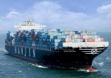 Sea Freight Agencies/Shipping Service From China to Iran/Freight Forwarder
