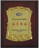 Member of China Pneumatic Chapter 6th Council