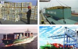 professional logistics service in china