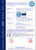 CE CERTIFICATE FOR PLASTIC PIPE PRODUCTION LINE