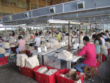 Leather Gloves Production Line-Sewing