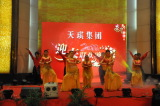 Wuhan Tianqi Group 2011 Spring Festival Gala