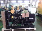 10 sets chinese brand genset for Nigeria Dealer
