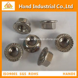 Stainless Steel nut Serrated Flange Nut hex nut