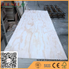 Radiata Pine Face Plywood