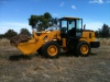 WL300 Wheel loader in Australia