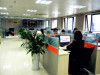 The company office environment