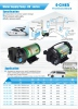 E-CHEN Delivery/Transfer Pump RV Series