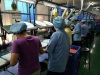 Our Factory Production Line