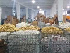 Zhejiang Jinhua Mika Decoration Commodity Co., Ltd.