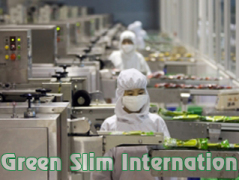 Green Slim International Industrial Limited